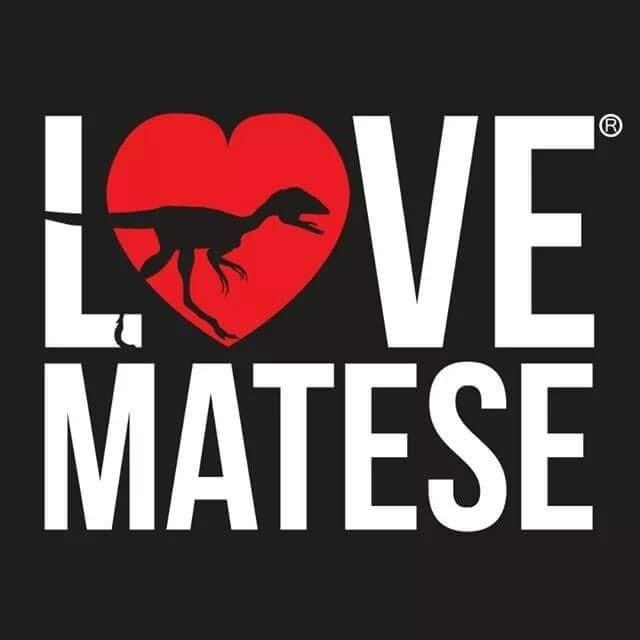 logo_lovematese